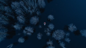 Preview wallpaper aerial view, boat, lake, trees