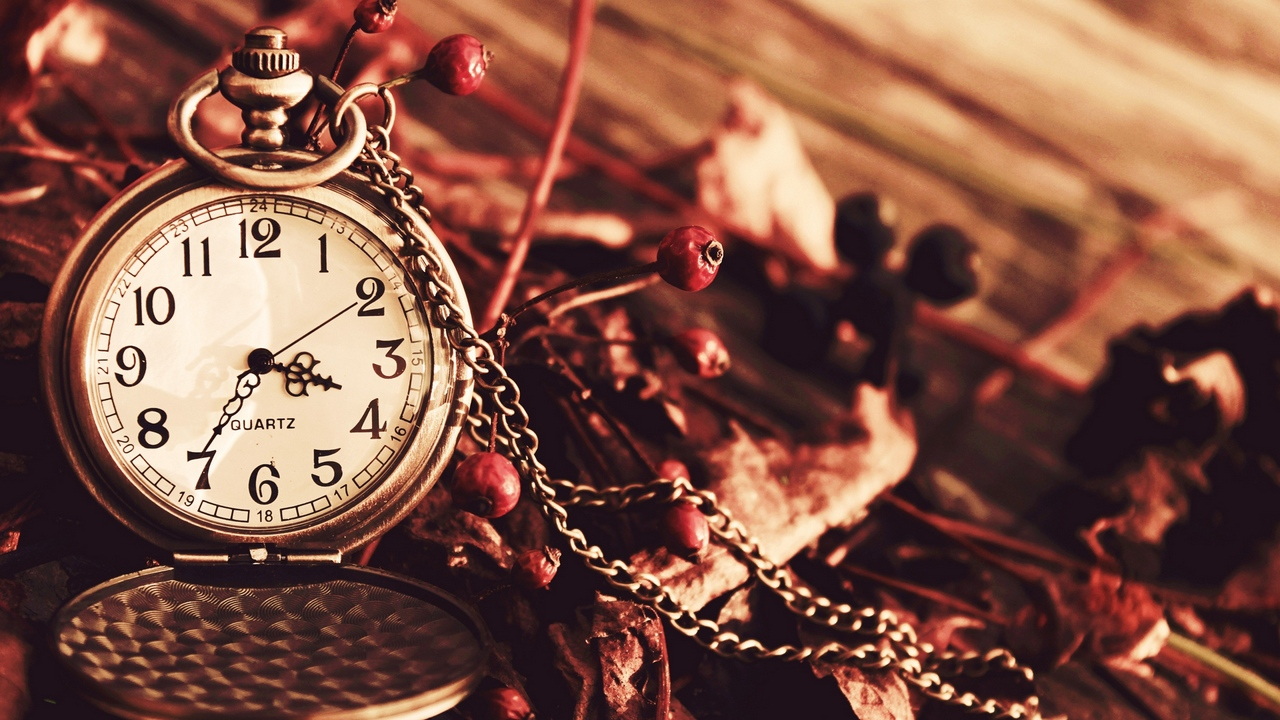 Preview wallpaper autumn, berries, chain dial, dry, pocket, watches