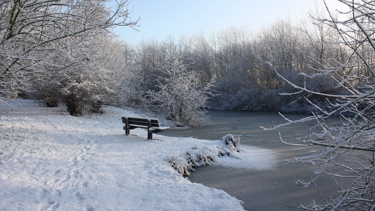 Preview wallpaper bench, branches, hoarfrost, ice, lake, snow, traces, winter