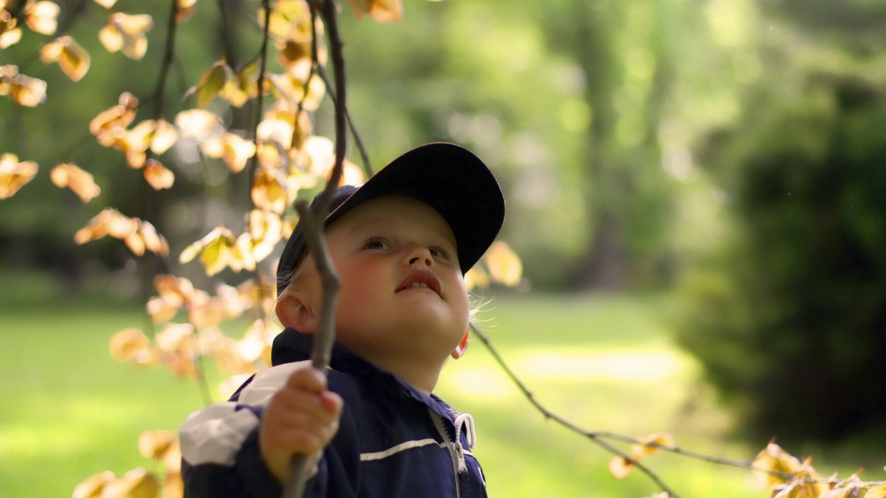 Preview wallpaper branch, cap, child, face, tree