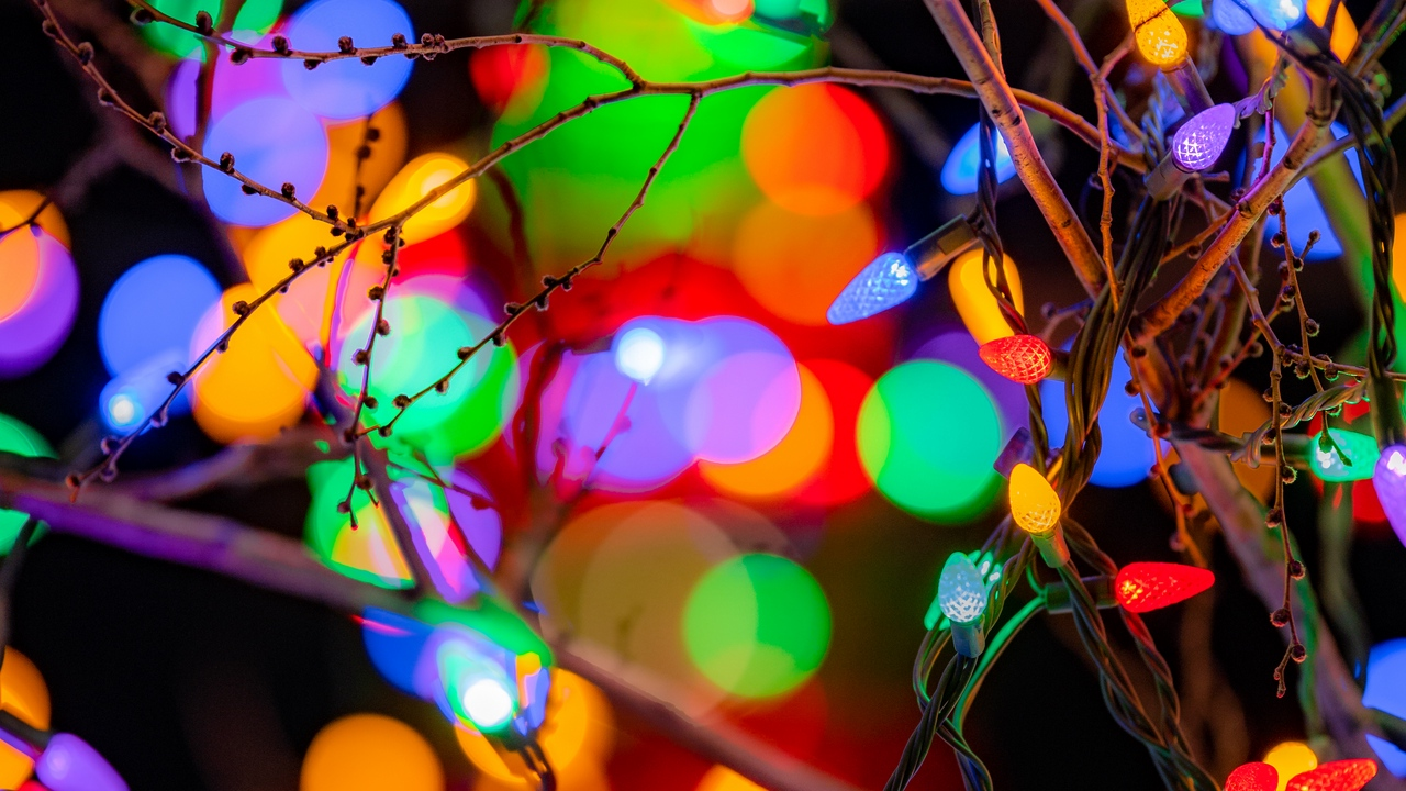 Preview wallpaper branches, colorful, festive, garlands, lights