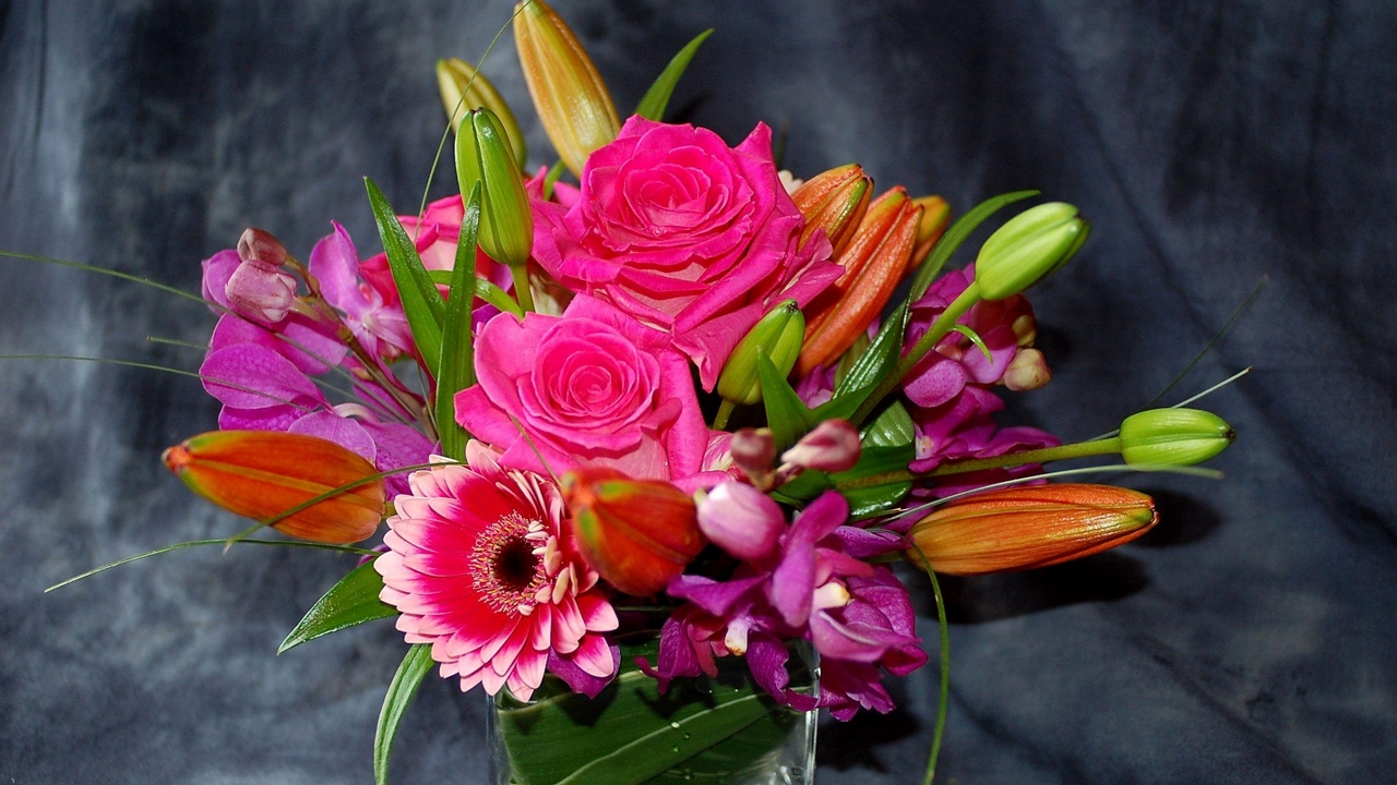 Preview wallpaper buds, composition, flowers, gerberas, orchids, roses