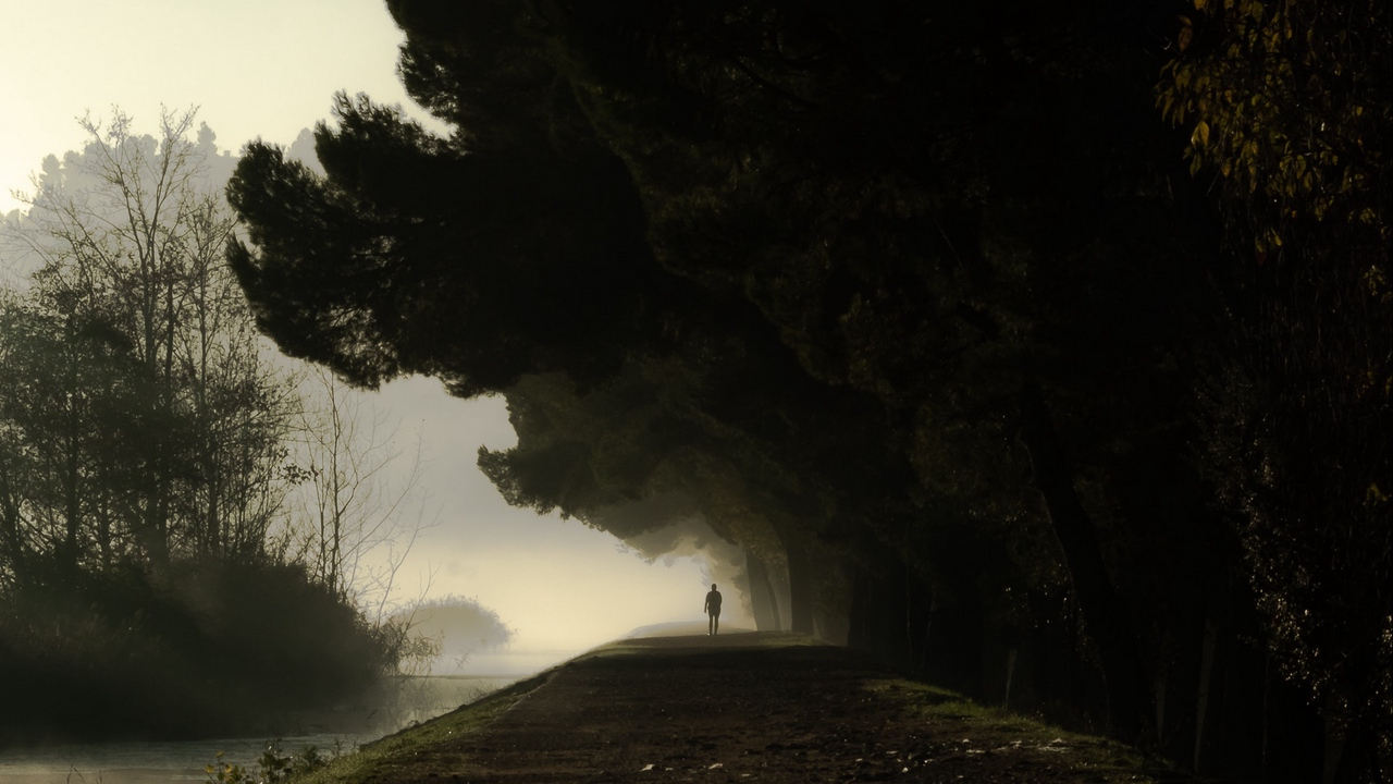 Preview wallpaper dark, darkness, fog, loneliness, silhouette, trees