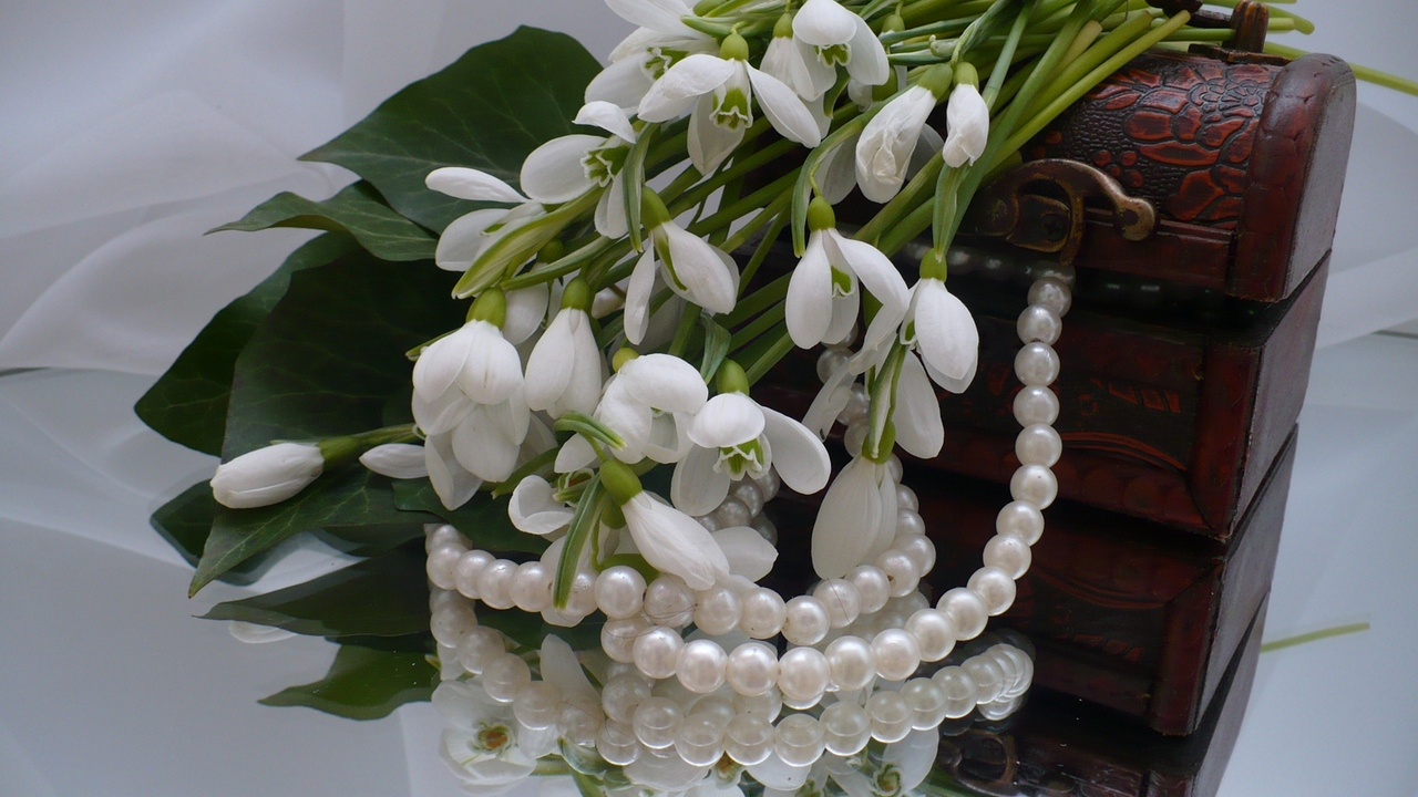 flowers jewelry casket snowdrops reflection mirrors