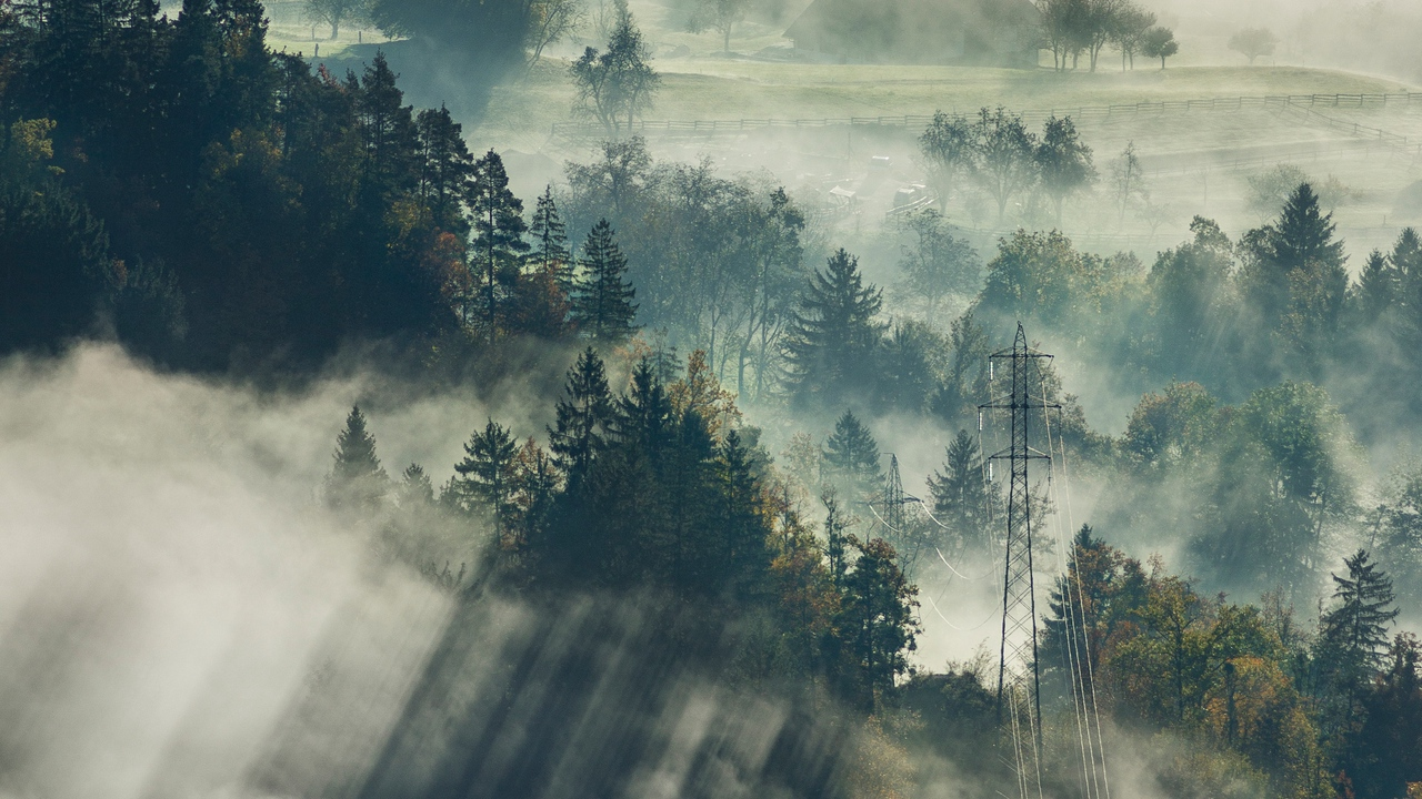 Preview wallpaper bled, fog, forest, slovenia, top view, trees