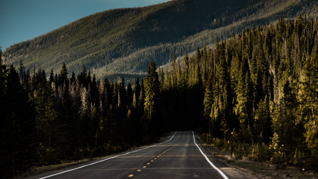 Preview wallpaper direction, forest, marking, mountain, road, sky