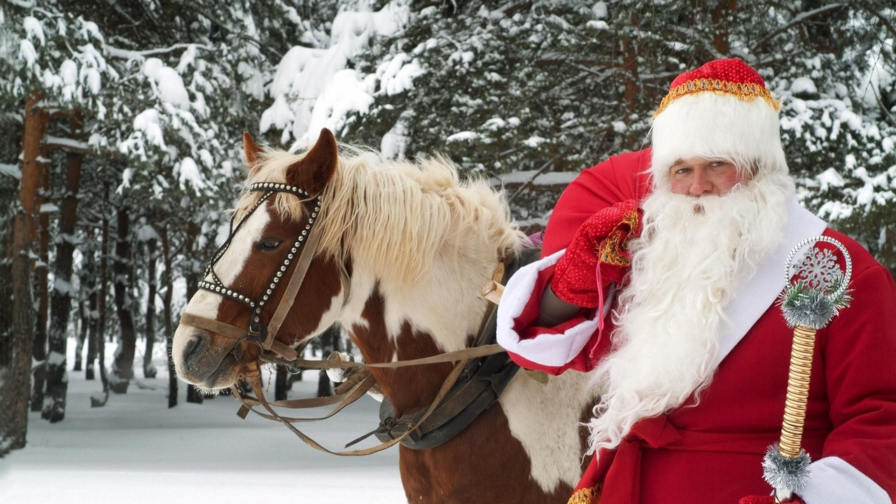 Preview wallpaper forest, horse, new year, santa claus, snow, staff