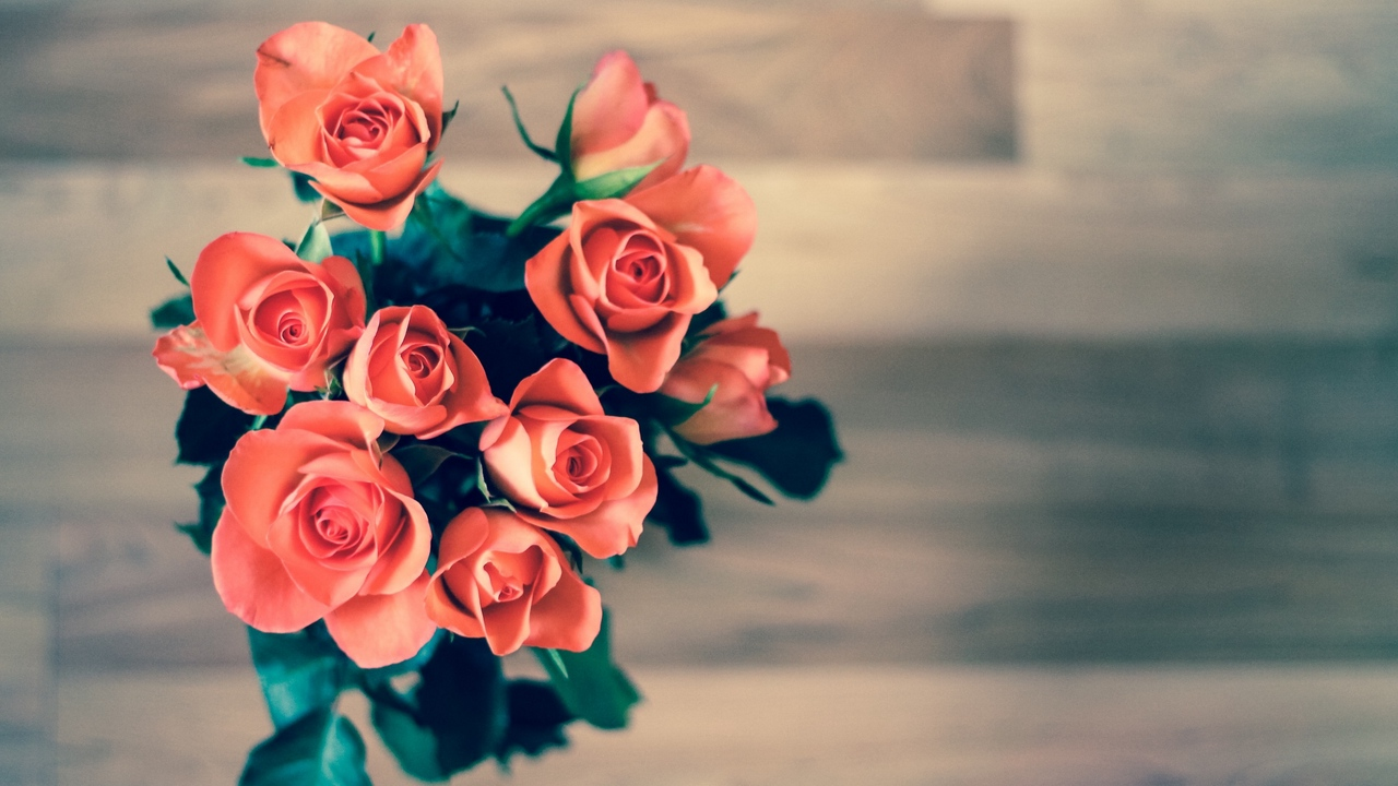 Preview wallpaper bouquet, buds, leaves, roses
