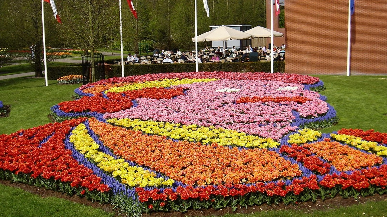 Preview wallpaper cafe, flowerbed, flowers, leisure, muscari, park, picture, tulips