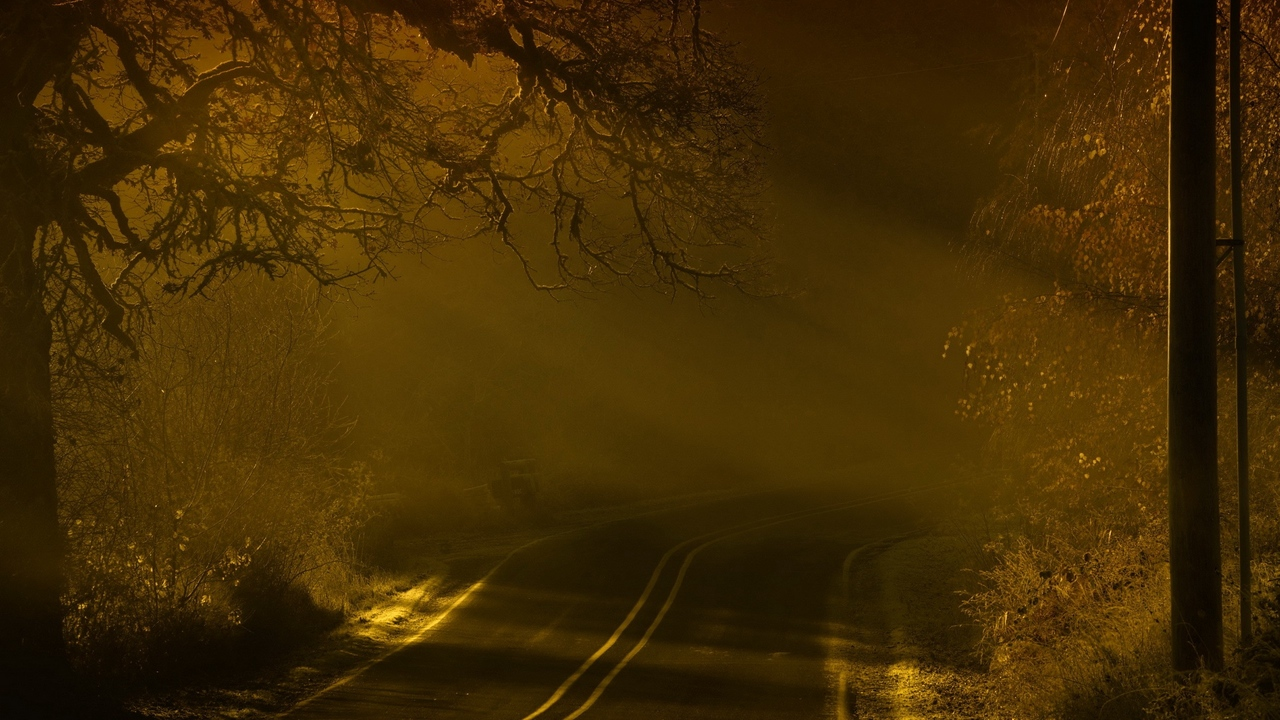 Preview wallpaper fog, marking, night, road