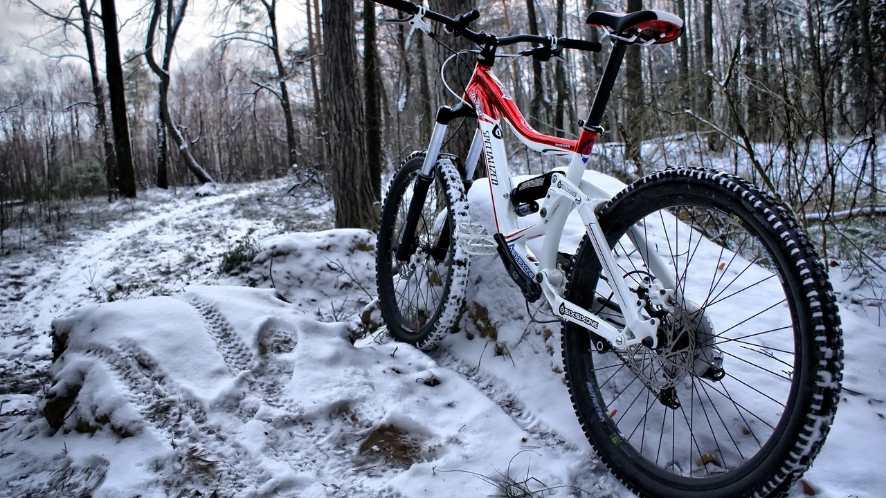 Preview wallpaper mountain bicycle, snow, traces, wood