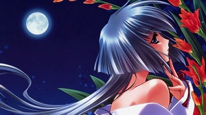 Preview wallpaper flowers, girl, moon, night, pin-up