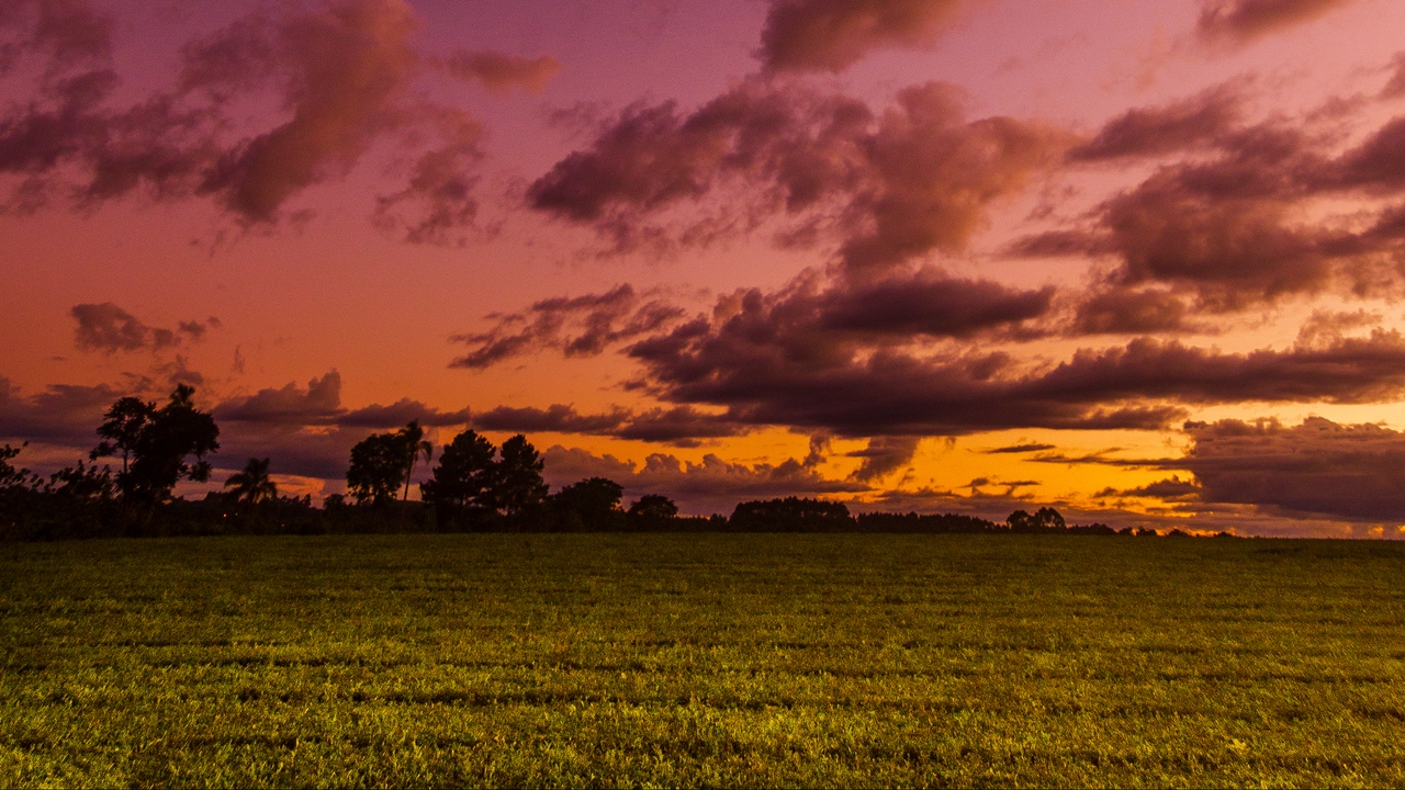 Preview wallpaper clouds, field, landscape, sky, trees, twilight