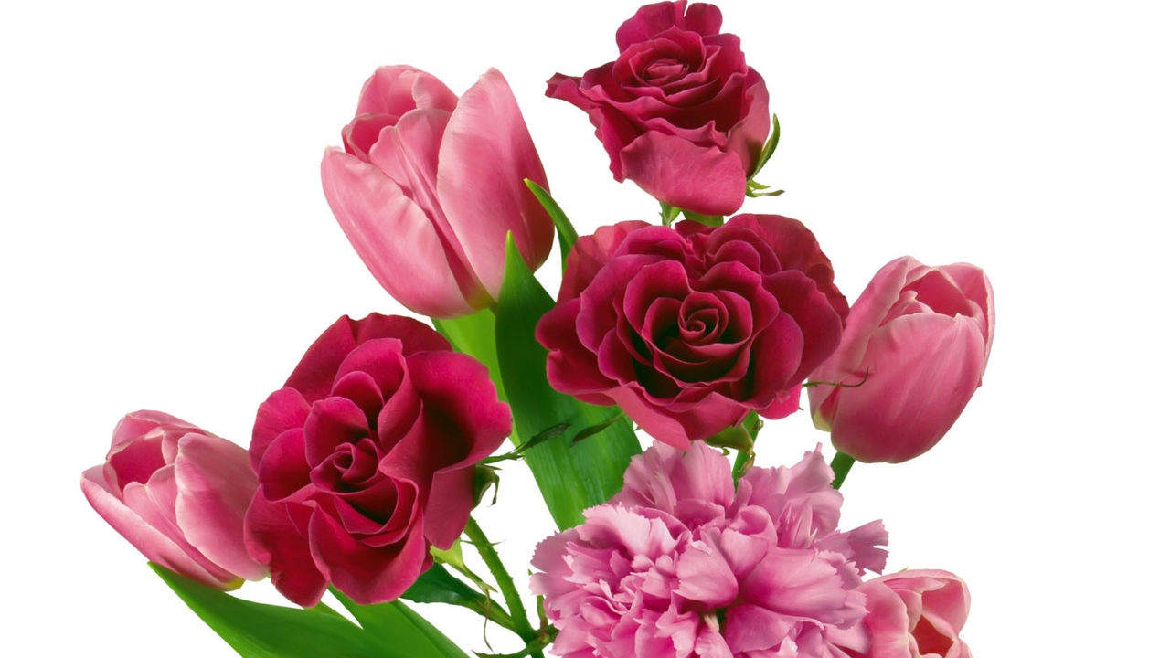 Preview wallpaper bouquets, carnations, roses, tenderness, tulips