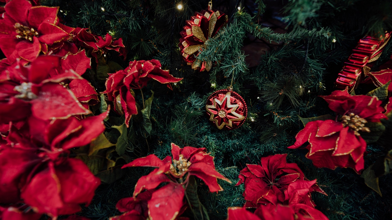 Preview wallpaper christmas, decoration, holiday, new year, tree