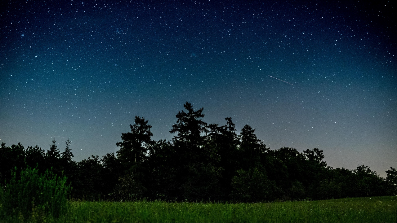 Preview wallpaper field, night, starry sky, trees
