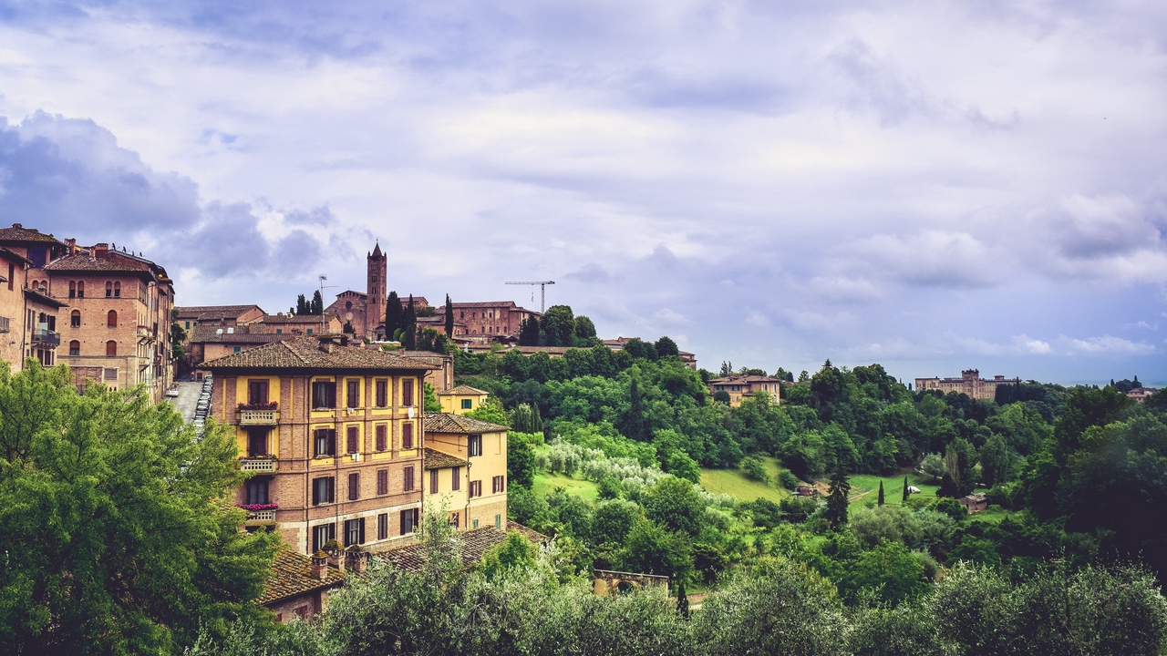Preview wallpaper buildings, italy, province, siena, trees