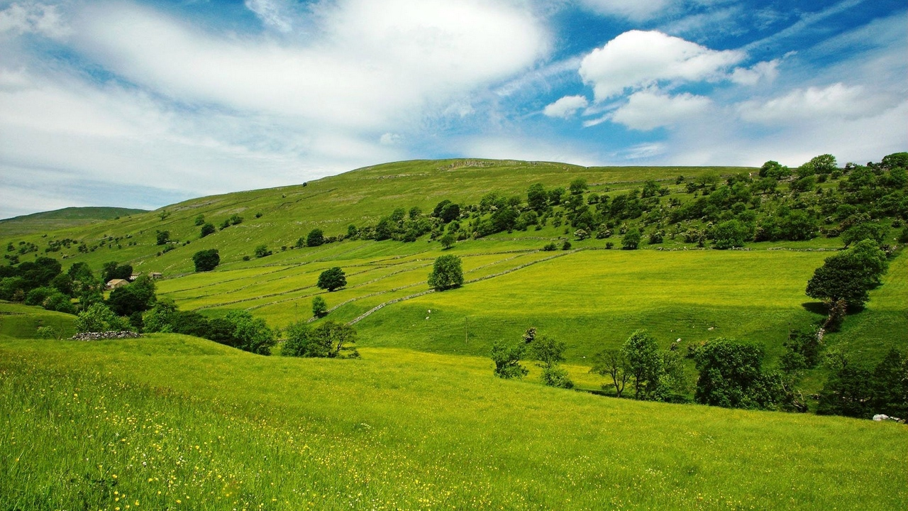 Preview wallpaper blue, grass, green, meadows, sky, slopes, trees, valley