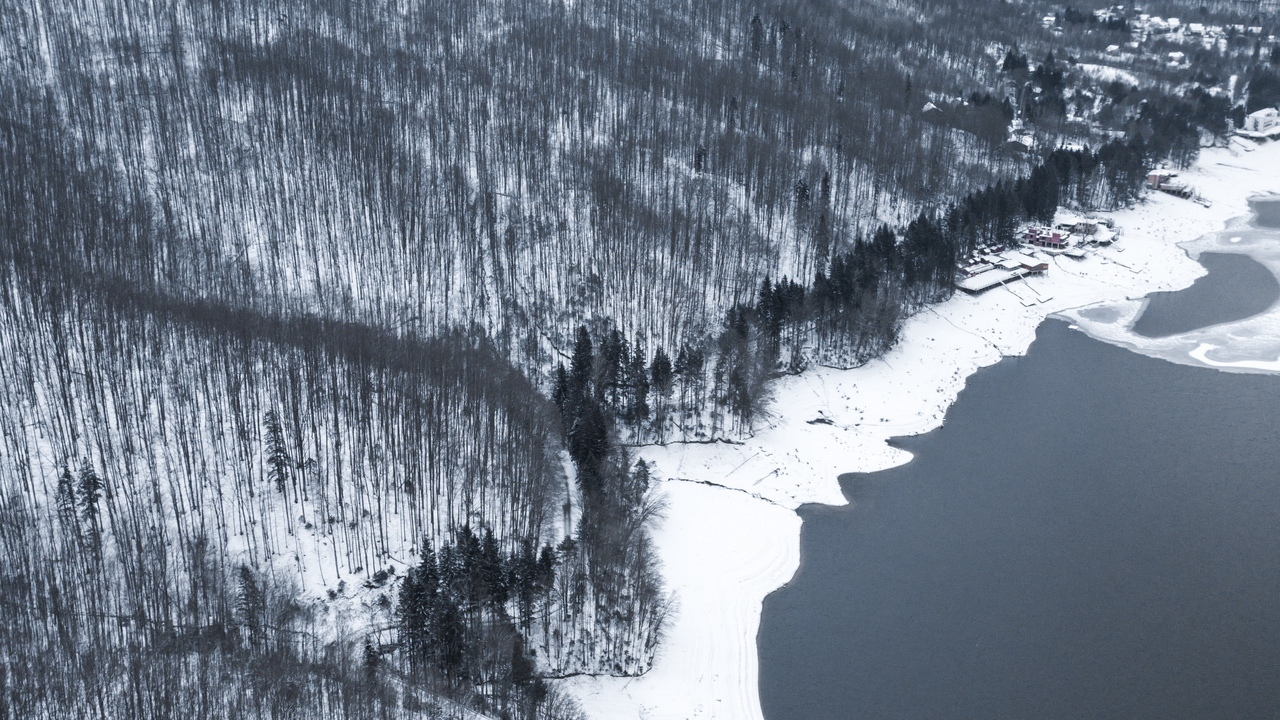 water aerial view shore winter gray forest