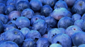 Preview wallpaper berries, bilberry, blueberry