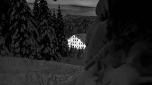Preview wallpaper bw, house, night, snow, trees, winter