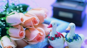 Preview wallpaper bouquet, drops, flowers, geese, gypsophila, roses