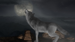 Preview wallpaper full moon, howl, moon, wolf