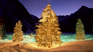 Preview wallpaper christmas, garlands, new year, snow, trees