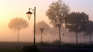 Preview wallpaper fog, lamp, signs, trees