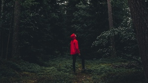 Preview wallpaper alone, forest, man, solitude, sweden, trees
