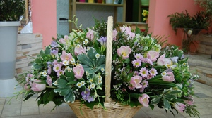 Preview wallpaper basket, beautiful, composition, daisies, flower, tea tree, tulips