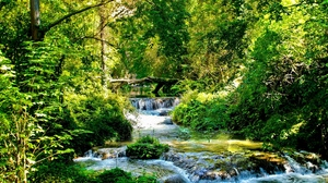 Preview wallpaper branches, cascades, green, light, river, solarly, stream, streams, trees, wood