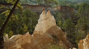 Preview wallpaper cliff, conifers, edge, mountains, trees