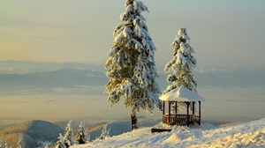 Preview wallpaper arbor, mountains, relief, snow, trees, winter