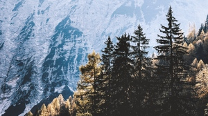 Preview wallpaper light, mountains, nature, pines, trees