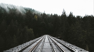 Preview wallpaper fog, forest, rails, railway, trees