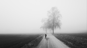 Preview wallpaper alone, bw, fog, road, silhouette, trees