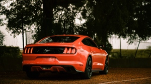 Preview wallpaper car, ford, ford mustang, rear view, red, sportscar