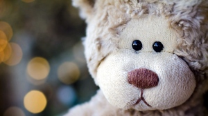 Preview wallpaper face, flashing, head, teddy bear, toy
