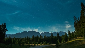 Preview wallpaper mountains, night, starry sky, trees